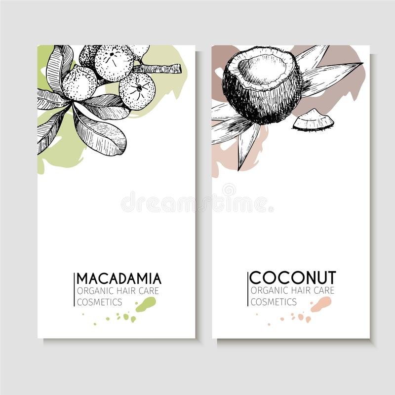 Vector set of hair care ingredients. Organic hand drawn elements. Flyers with macadamia and coconut. vector illustration