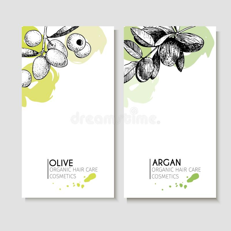 Vector set of hair care ingredients. Organic hand drawn elements. Flyers with olive and argan. Use for cosmetic package, shop, store, products, identity royalty free illustration