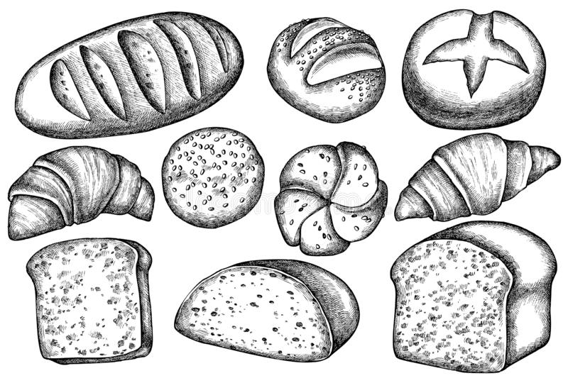 Vector set of hand drawn black and white buns and bread, croissants and bread vector illustration