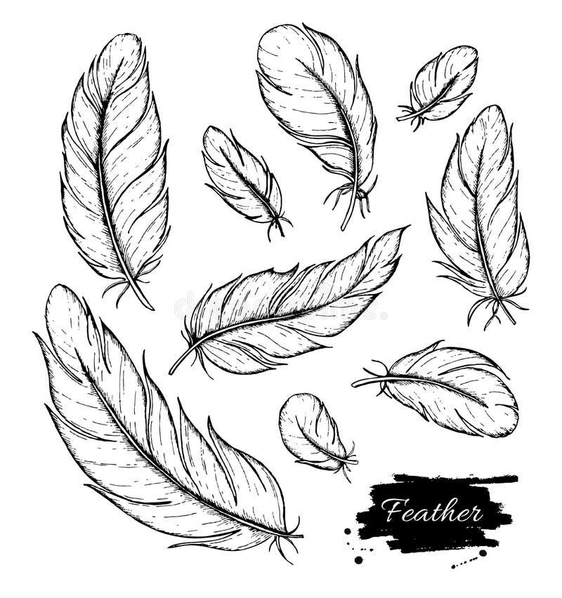 Vector set of hand drawn feather. Ink vintage illustration stock illustration