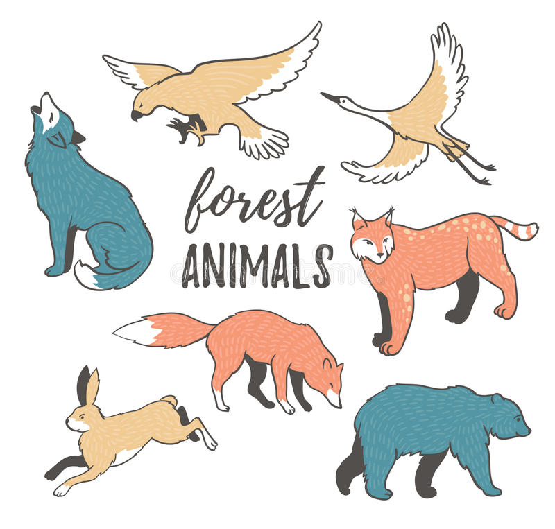 Vector set of hand drawn wild forest animals in hipster style. Collection of cartoon animals on the white background. vector illustration