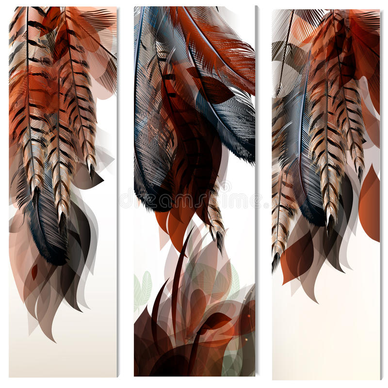 Vector set of identity templates with colorful feathers royalty free illustration