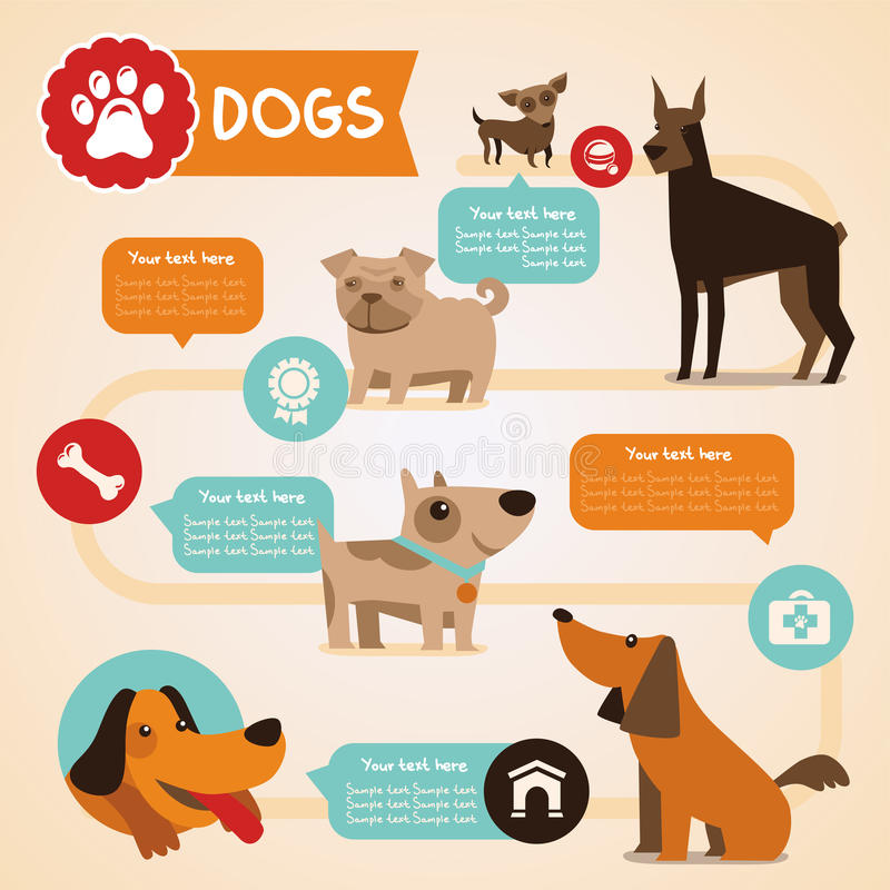 Vector set of infographics design elements - dogs vector illustration