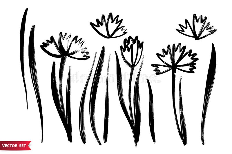 Vector set of ink drawing herbs, flowers, monochrome artistic botanical illustration, isolated floral elements, hand drawn stock illustration