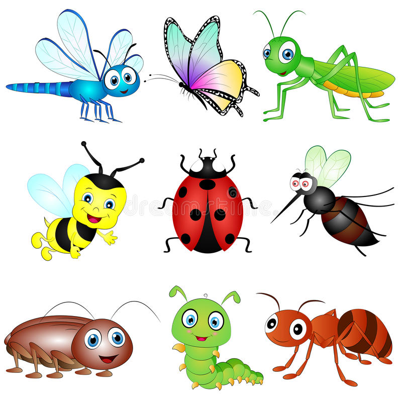 Vector Set of Insects. Vector Illustration set of six nine Insects stock illustration