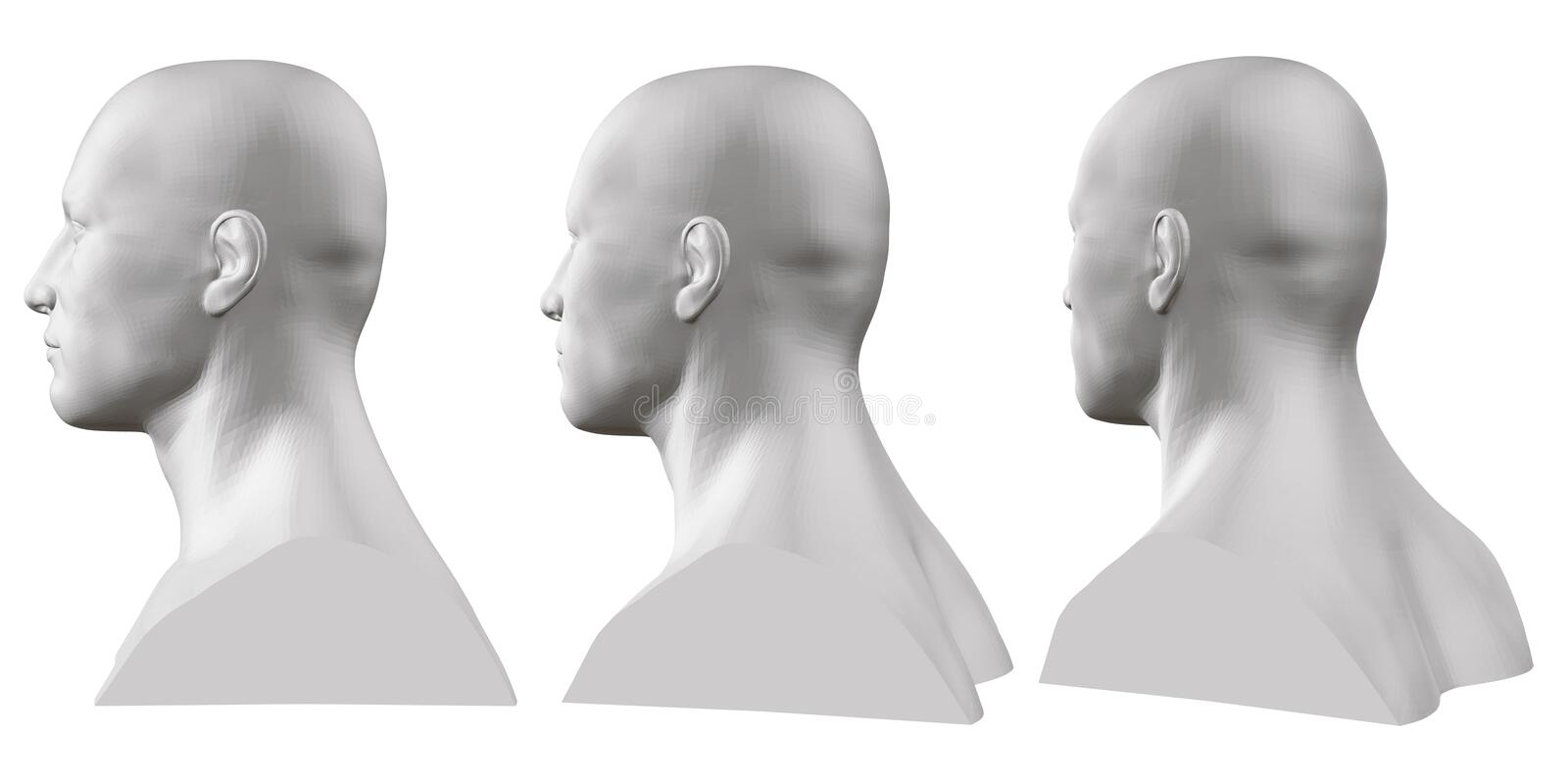 Vector set of isolated male busts of mannequins on white background. 3D. Male bust from different sides. Vector royalty free illustration