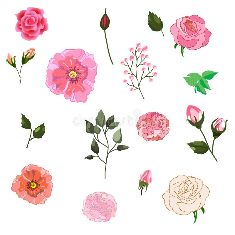 Vector set of isolated Rose buds with leaves. Handmade watercolor style illustration of flowers. Beautiful realistic vector vector illustration