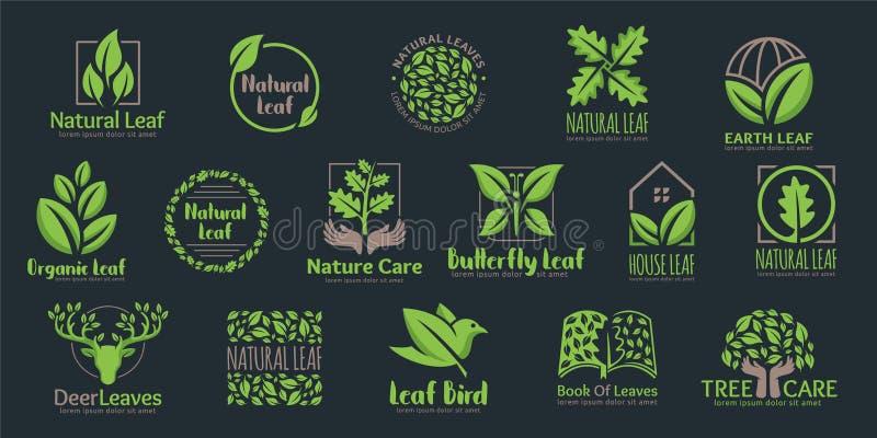 Vector Set of Leaf logo template, 16 professional design in one pack. stock illustration