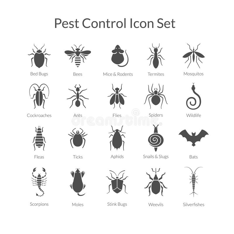 Free Vector Set Of Icons With Insects For Pest Control Business Royalty Free Stock Photos - 63402328