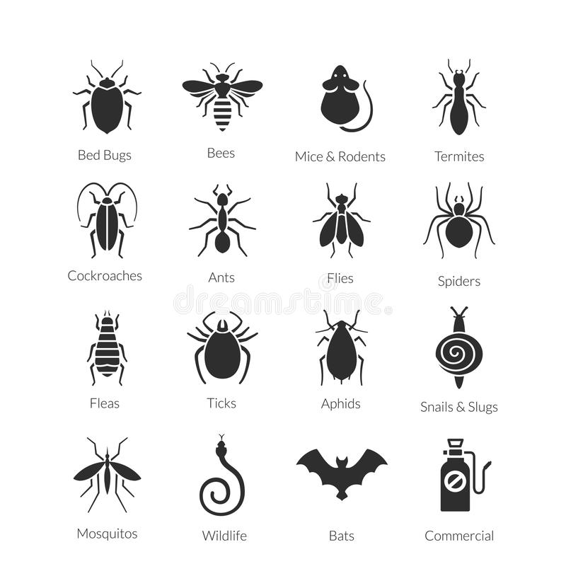 Free Vector Set Of Icons With Insects For Pest Control Company Stock Photography - 62196602