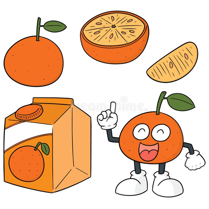 Vector set of oranges royalty free illustration