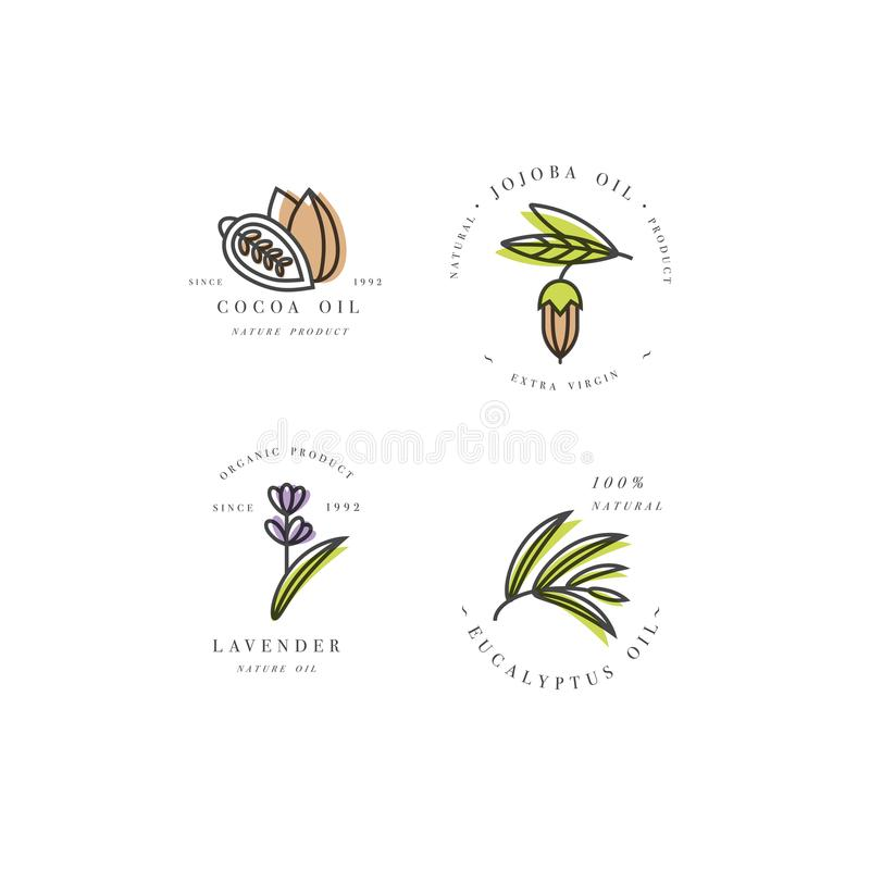 Vector set of packaging design templates and emblems - beauty and cosmetics oils - cocoa, lavender, jojoba and stock illustration