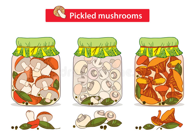 Vector set with pickled orange-cap boletus, chanterelles and champignons mushroom in glass jar with bay leaf and black pepper. Vector set with pickled orange stock illustration