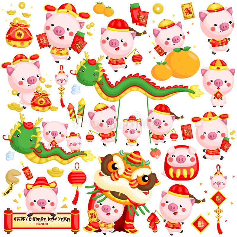 A vector set of pigs in Chinese new year celebration costume and items vector illustration