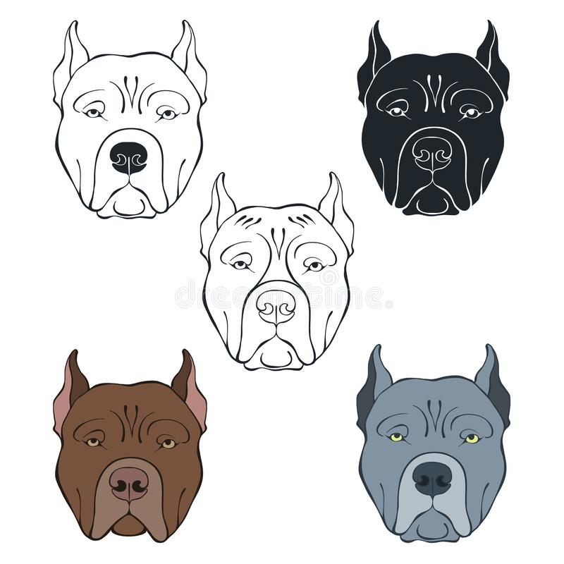 Pit Bull Terrier. Vector set of dog`s face. Hand-drawn vector illustration on a white background. Sketch, five isolated variants. royalty free illustration