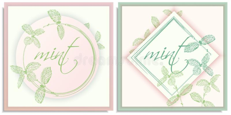 Vector set of postcards templates, invitation with hand-drawn graphics sprigs of beautiful mint, Gently color shades of green,. White, pink gradient. Lettering stock photo