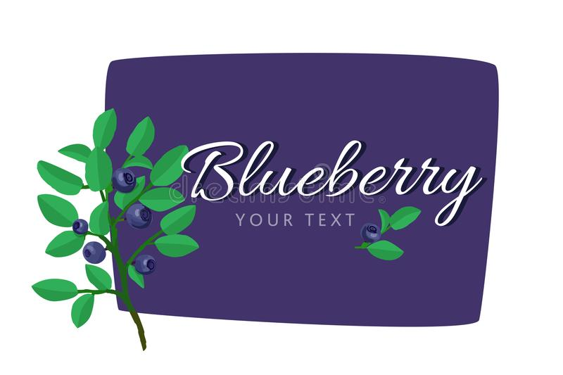 Vector set of product labels. Blueberry template for food packaging. Blueberry template for food packaging. Vector set of product labels royalty free illustration