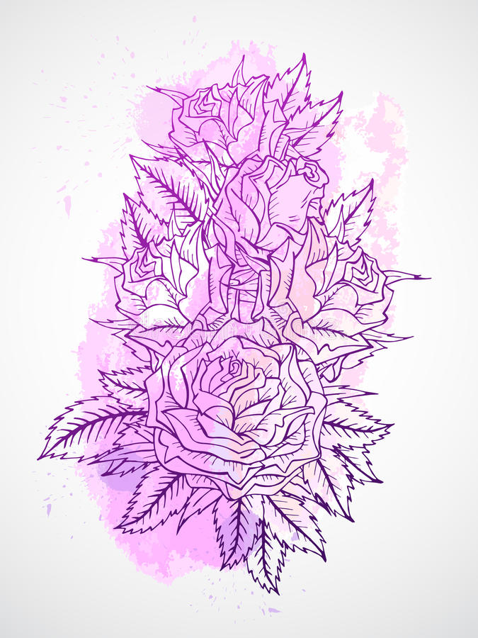 Vector set of roses and leaves. Purple contour. royalty free illustration