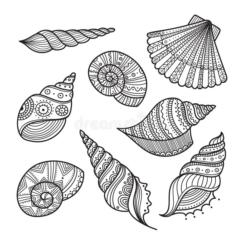 Vector set of shells in ethnic tribal boho style with ornament. royalty free illustration