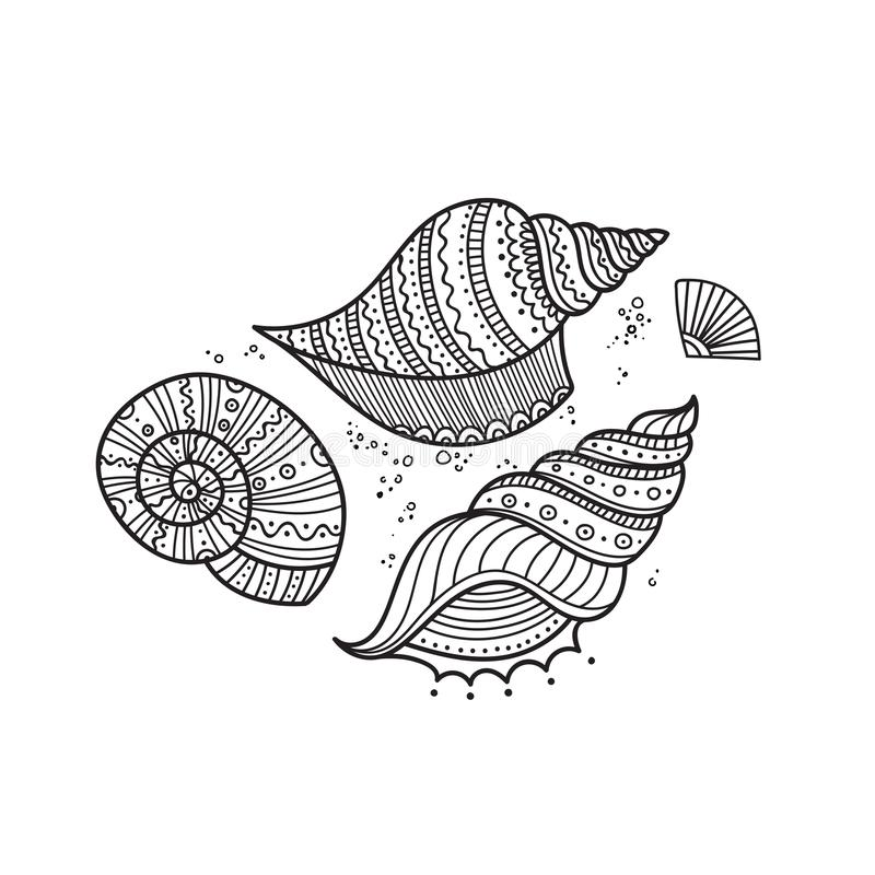 Vector set of shells in ethnic tribal boho style with ornament. stock illustration
