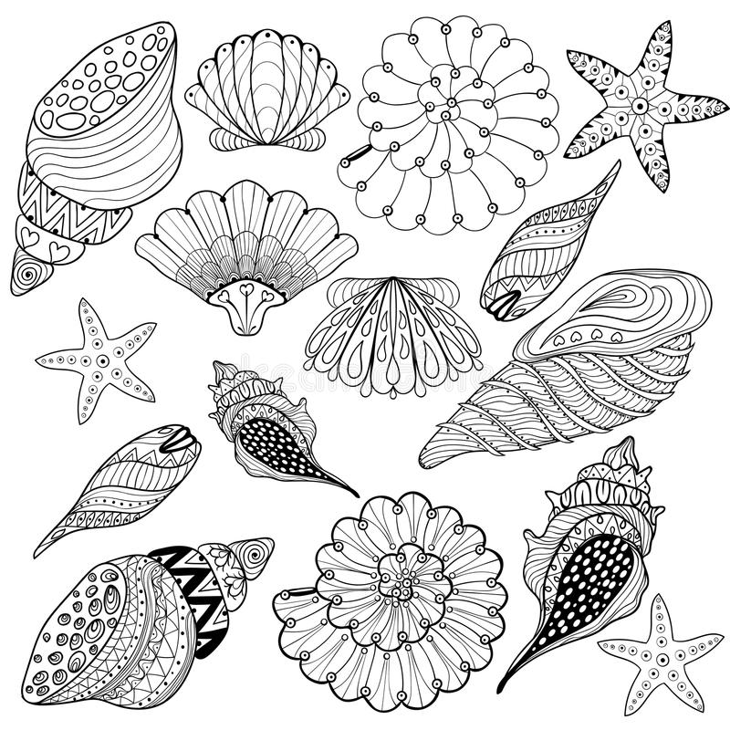 Vector set Shells, zentangle seashells for adult anti stress Col. Oring pages, patterned sea shell illustration for tattoos with high details. hand drawn sketch royalty free illustration