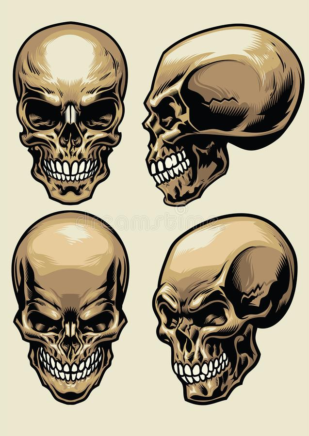 Set of skull in detailed style. Vector set of skull in detailed style royalty free illustration