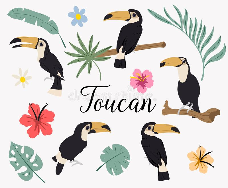 Vector set of toucan birds on tropical branches with leaves and flowers. Vector set of tropical leaves. Palm, monstera, banana royalty free illustration