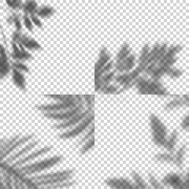 Vector Set of Transparent Shadows of Leaves. Decorative Design Elements for Collage and Mock Up. Creative Overlay Effect. For Mockups royalty free illustration