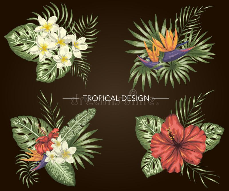 Vector set of tropical compositions with hibiscus,  plumeria,  strelitzia flowers,  monstera. And palm leaves on black background. Bright realistic watercolor vector illustration