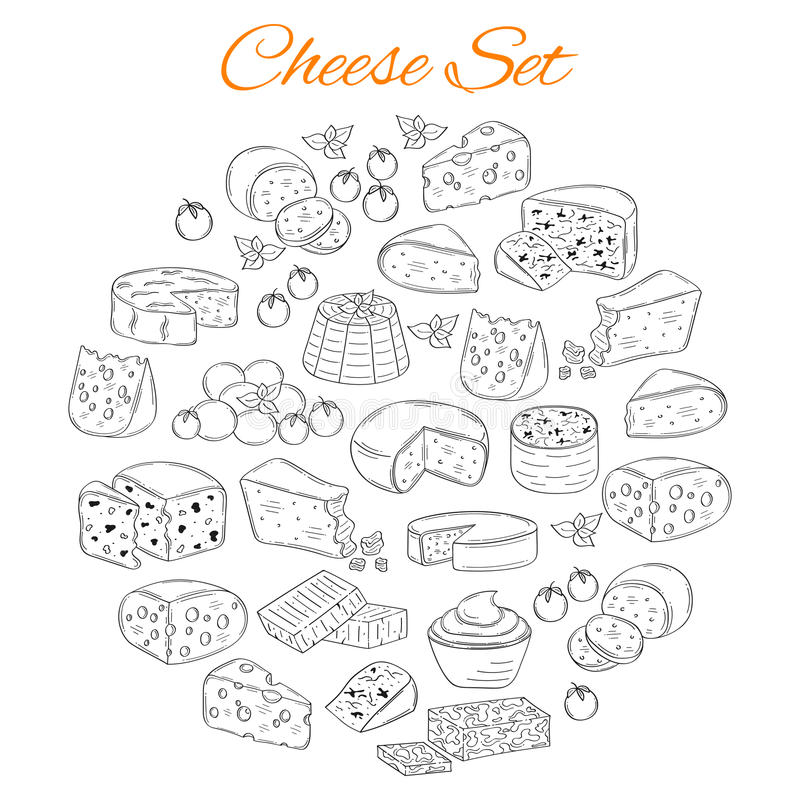 Vector set of various types of cheese, hand drawn illustration isolated on white background. vector illustration