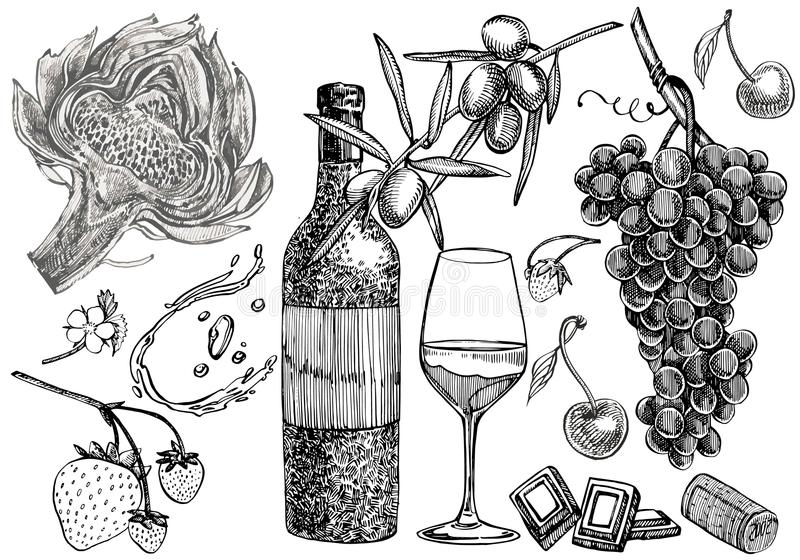 Vector set of vine products. Illustration in sketch style. Hand drawn design elements. Isolated on white background. Engraving style illustrations royalty free illustration