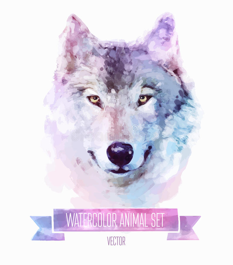 Vector set of watercolor illustrations. Cute wolf vector illustration
