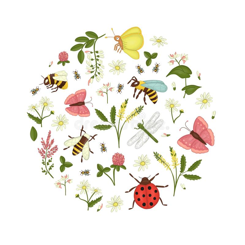 Vector set of wild flowers, bee,  bumblebee, dragonfly, ladybug, moth, butterfly framed in circle royalty free illustration
