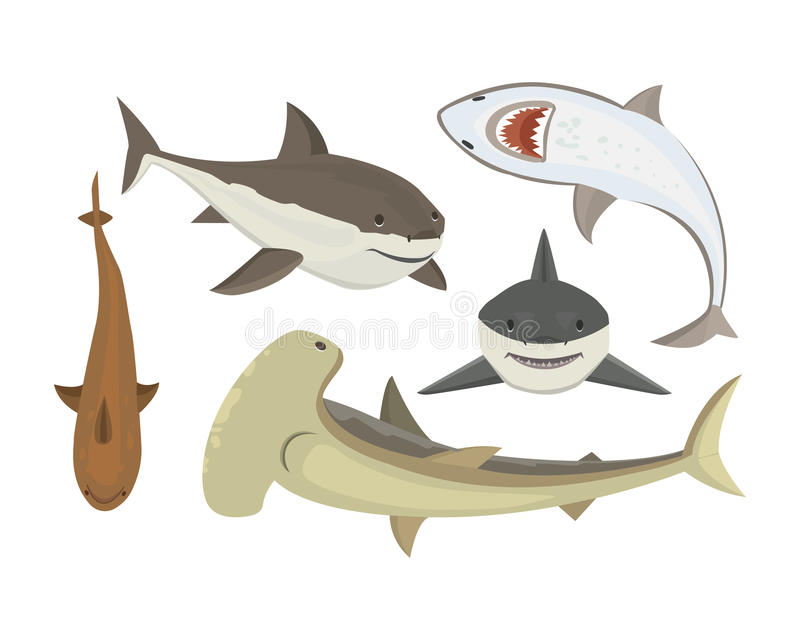 Vector shark character. Vector illustration toothy white swimming angry shark. Animal sea isolated character underwater cute marine wildlife mascot. Scary smile stock illustration