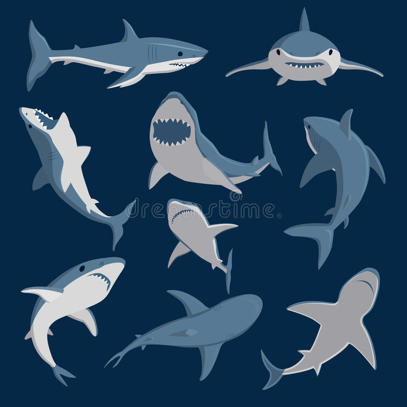 Vector shark comic style character wild fish set. Vector illustration toothy white swimming angry shark. Animal sea shark character underwater cute marine stock illustration