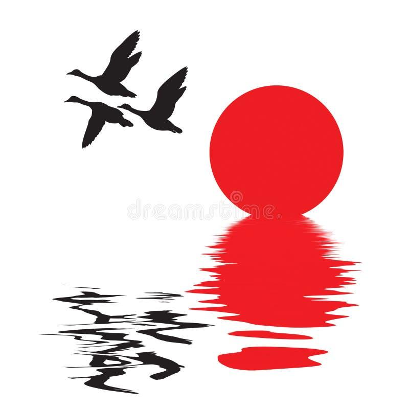 Vector silhouet vliegende eenden vector illustratie