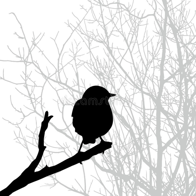 Download Vector  Silhouette Of The Bird Stock Vector - Illustration: 12952639
