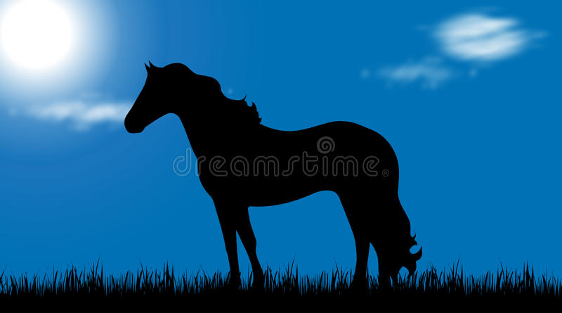 vector silhouette horse meadow sunny day