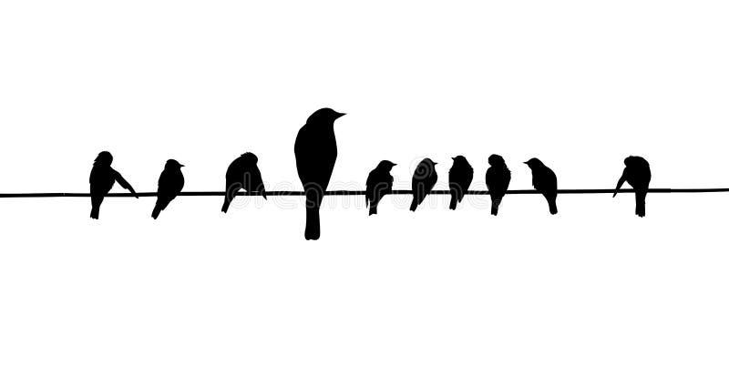 Vector silhouetten van de vogels vector illustratie