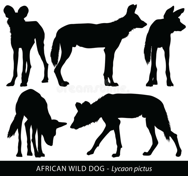 Vector silhouettes of African Wild Dogs vector illustration