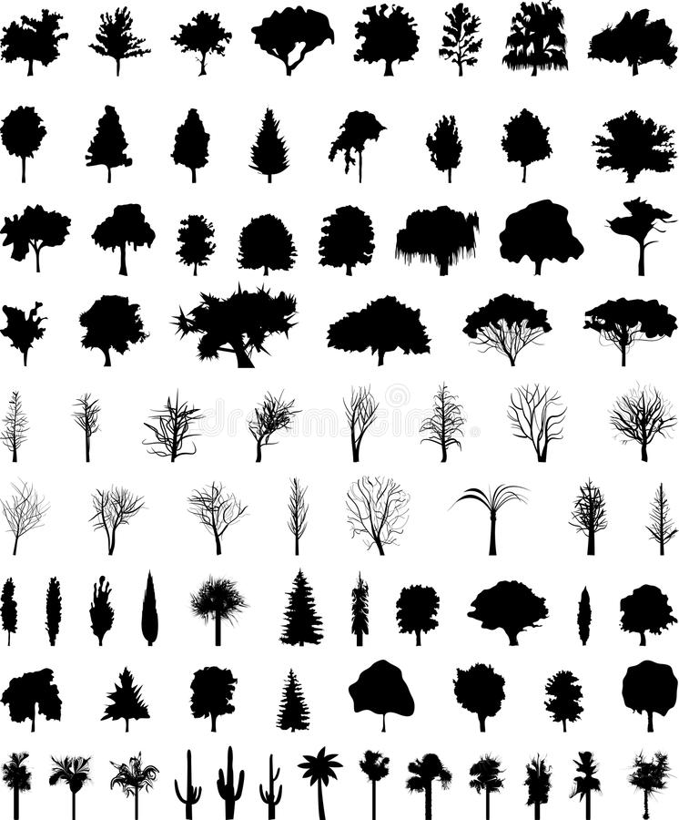 Vector trees. Vector silhouettes of the trees
