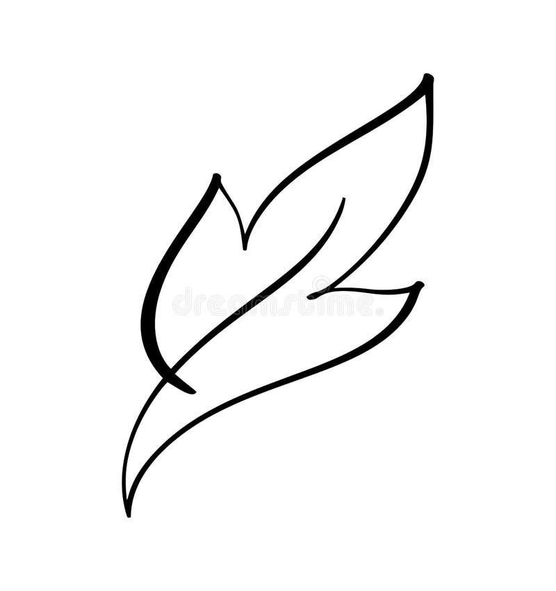 Vector a silhueta estilizado da folha da ?rvore da mola isolada no fundo branco Logotipo do sinal de Eco, etiqueta da natureza El ilustração royalty free