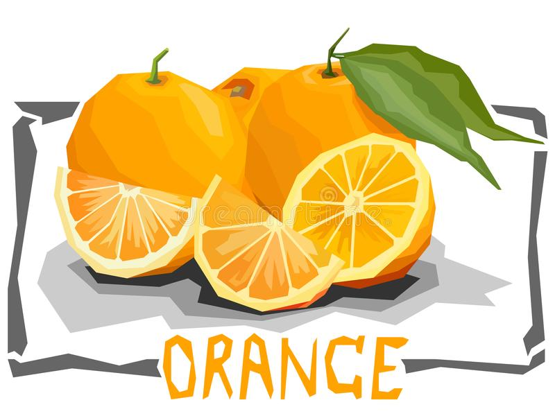 Vector simple illustration of oranges. Vector simple illustration of oranges with halves in angular cartoon style vector illustration