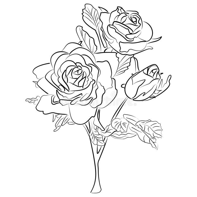 Vector sketch black and white rose stock vector illustration of download vector sketch black and white rose stock vector illustration of flower part mightylinksfo