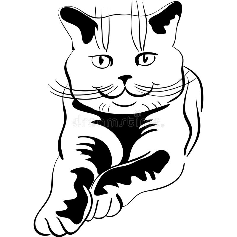 Vector Sketch of the british cat royalty free stock image