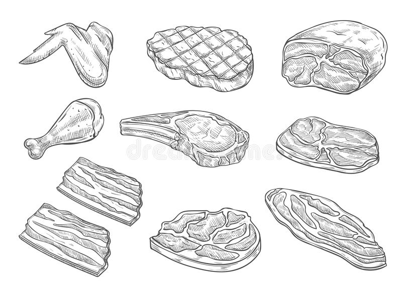Vector sketch butchery meat chicken icons stock illustration