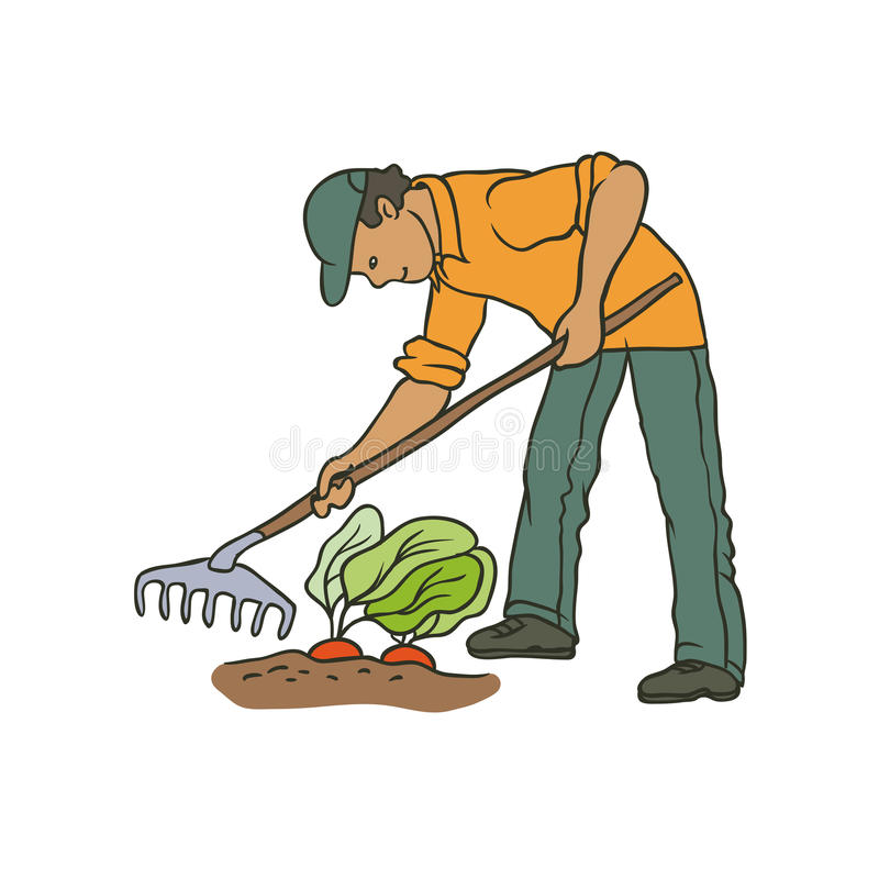 Vector sketch coloured illustration of farmer. Man with rake weeding vegetables. Autumn gardening harvest. Drawn contour cartoon c. Haracter peasant working in vector illustration