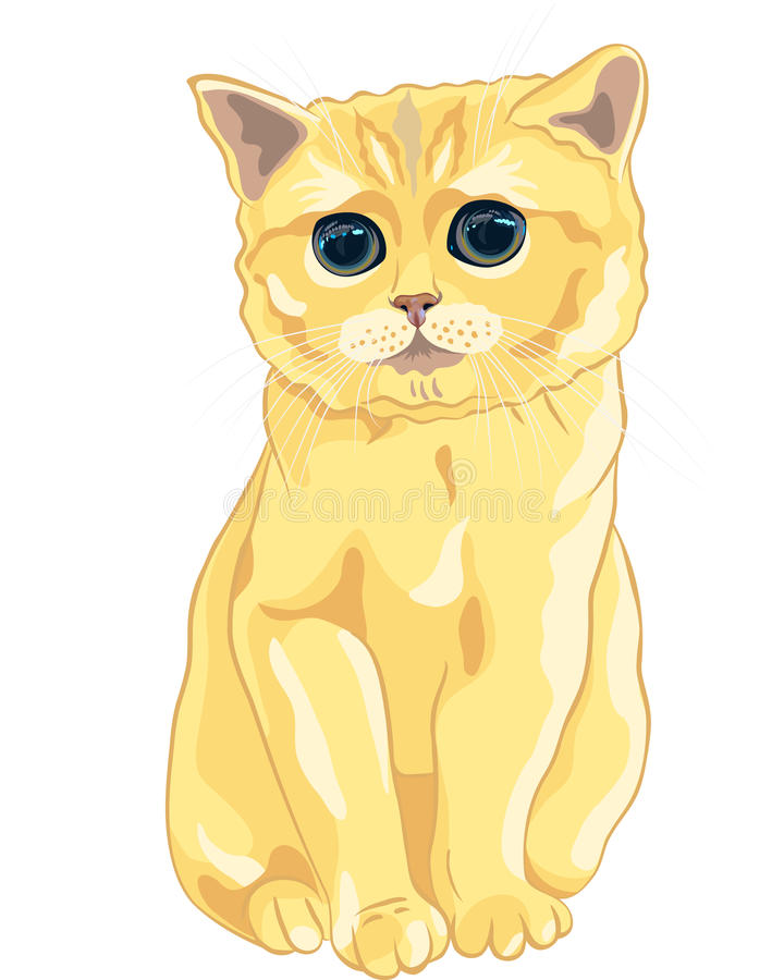vector Sketch cute lilac British kitten sitting royalty free stock photography