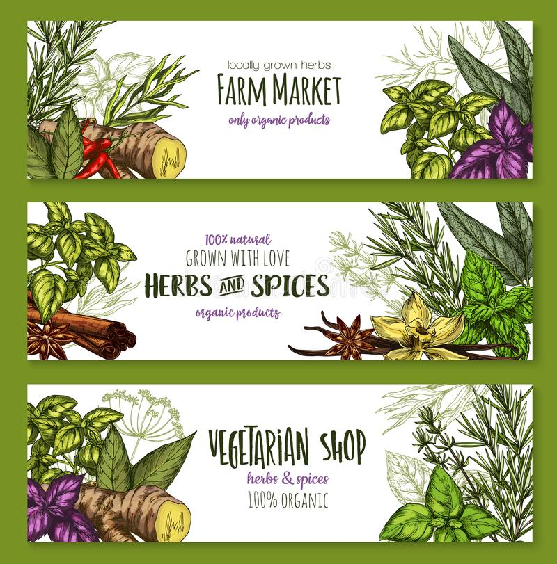 Vector sketch farm banners of spices and herbs royalty free illustration