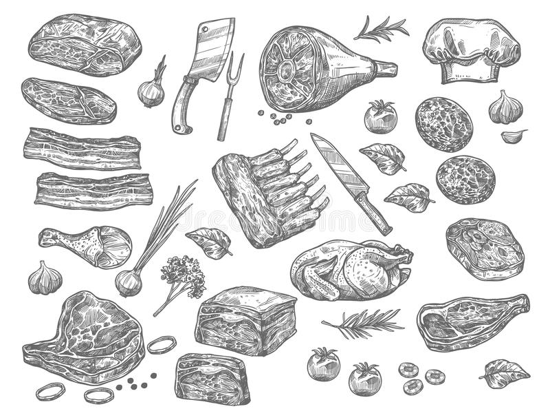 Vector sketch icons of meat for butchery shop. Meat sketch icons set for butchery products. Vector isolated set of farm fresh meat products of beef loin or royalty free illustration